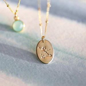 Pisces Bohemian Zodiac Minimalist Charm Necklace